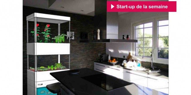 risebox cultiver ses propres fruits et l gumes en appartement. Black Bedroom Furniture Sets. Home Design Ideas