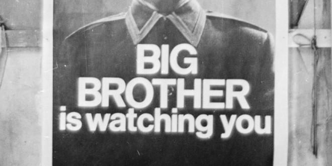 Harris Interactive Big Brother
