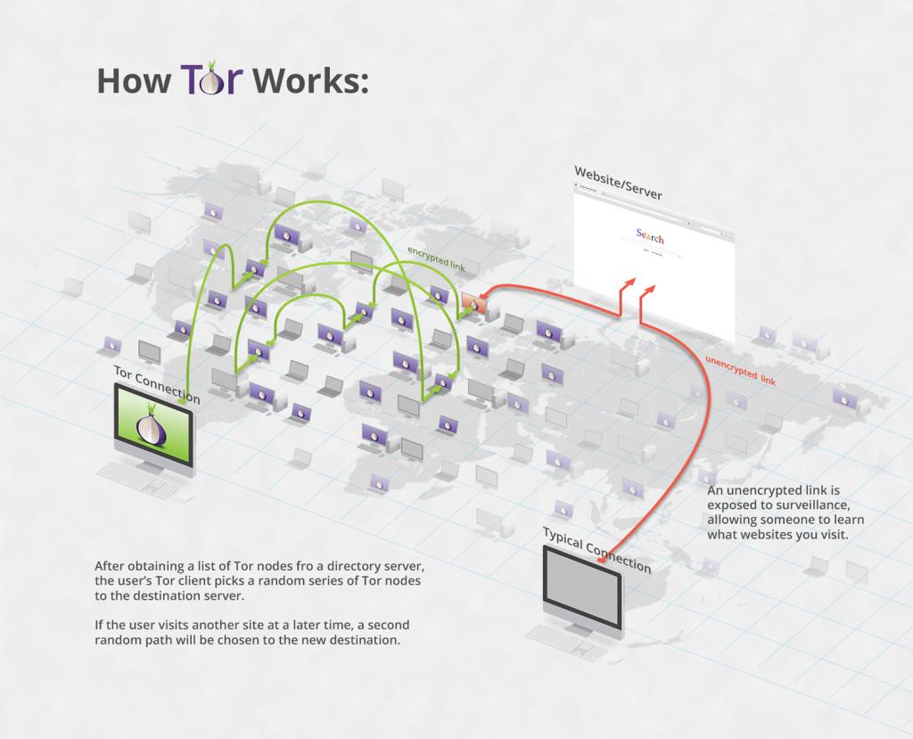 Infographie didactique de TOR