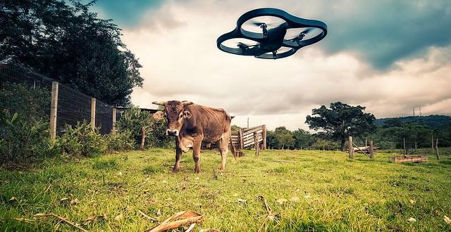 drone--640x330