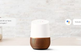 mini google home echo dot