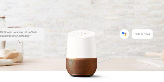 mini google home echo dot