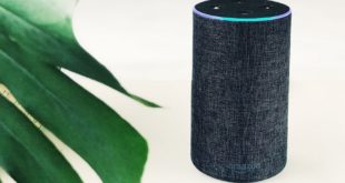 amazon echo temoin meutre