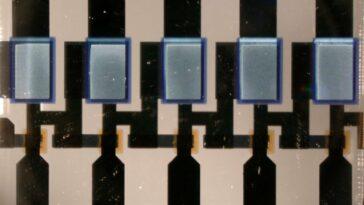 Electronique organique